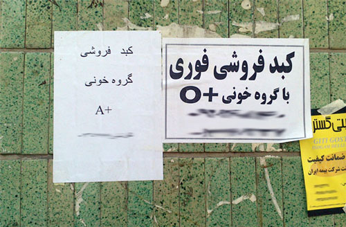 تصاویر پیشنهادی برای پخش در مانیتورهای مجلس شورای اسلامی