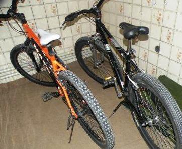 دزد دوچرخه های سبزوار دستگیر شد