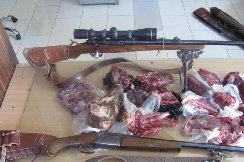 شکارچیان متخلف در سبزوار و داورزن دستگیر شدند