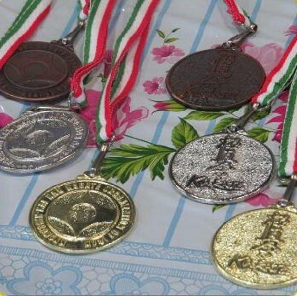ورزشکاران سبزوار۳۲۰ مدال کشوری کسب کردند