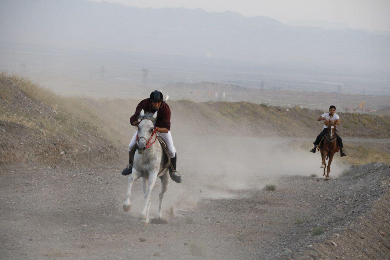 مسابقه اسبدوانی گرامیداشت هفته دولت در سبزوار برگزار شد