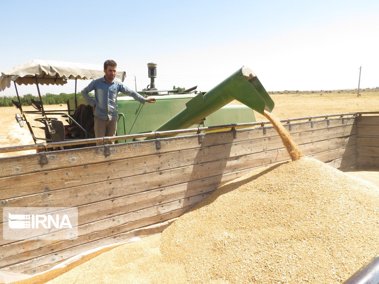 گندمکاران غرب خراسان رضوی ۱۰۰ درصد مطالبات خود را دریافت کردند