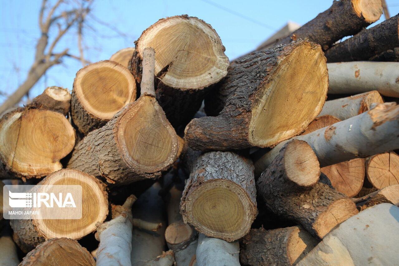 محموله چوب قاچاق در سبزوار کشف شد