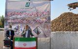 ایران طی ۳ سال در تولید شکر خودکفا میشود